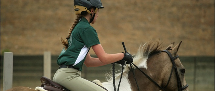 Ojaivalley-Equestrian-banner-web
